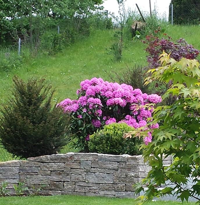 Otten Gartengestaltung, gartengestaltung michael otten, Design ideen